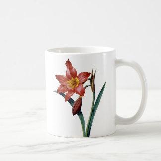 アマリリス コーヒーマグカップ