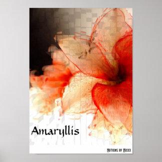 アマリリス ポスター