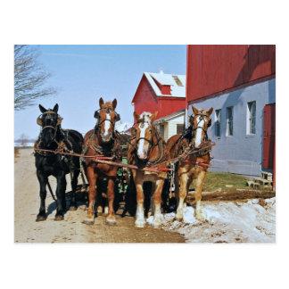 アマン派のばん馬のチーム郵便はがき ポストカード