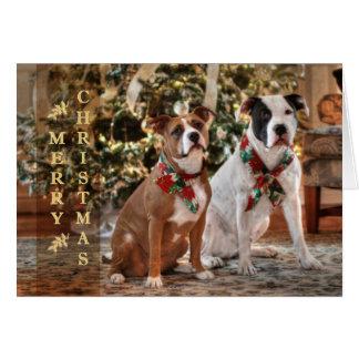 アメリカかわいいクリスマスの救助のピットブルおよびBull犬 カード