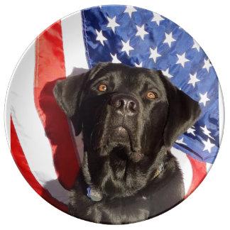 アメリカのお気に入りのな犬の品種: ラブラドールRetriev 磁器プレート