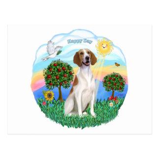 アメリカのキツネの猟犬 ポストカード