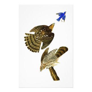 アメリカのスタンリーのタカのジョン・ジェームズ・オーデュボンの鳥 便箋