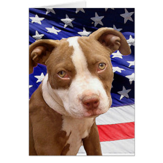 アメリカのピットブルの子犬 カード