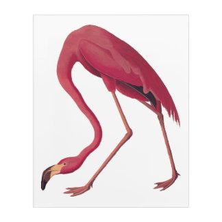 アメリカのピンクのフラミンゴのヴィンテージの芸術の蔵書票 アクリルウォールアート