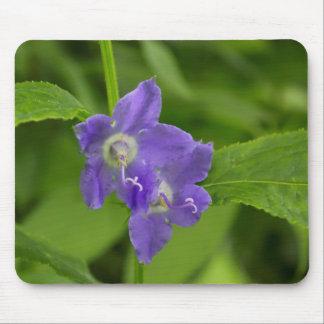 アメリカのホタルブクロの紫色の野生の花のマウスパッド マウスパッド
