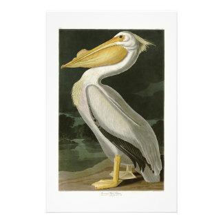 アメリカのモモイロペリカンのジョン・ジェームズ・オーデュボンの鳥 便箋