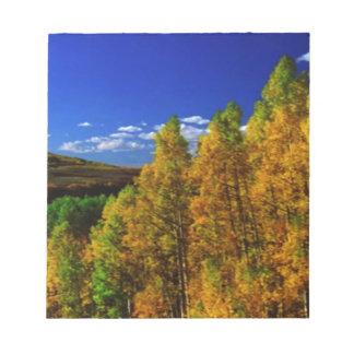 アメリカの木の秋季の自然の写真撮影 ノートパッド