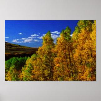 アメリカの樹木限界線オリンピック国立公園のtreeline ポスター