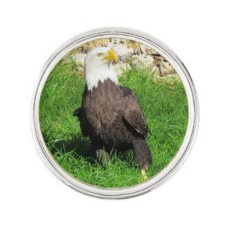アメリカの白頭鷲のラペルピン ラペルピン