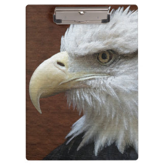 アメリカの白頭鷲の鳥の野性生物動物米国 クリップボード