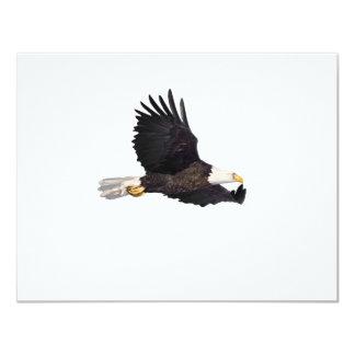 アメリカの白頭鷲 カード