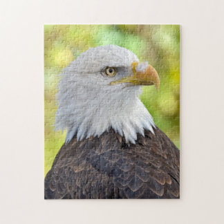 アメリカの白頭鷲 ジグソーパズル