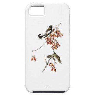 アメリカの米の鳥のジョン・ジェームズ・オーデュボンの鳥 iPhone SE/5/5s ケース