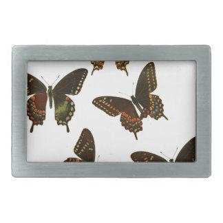 アメリカの蝶 長方形ベルトバックル