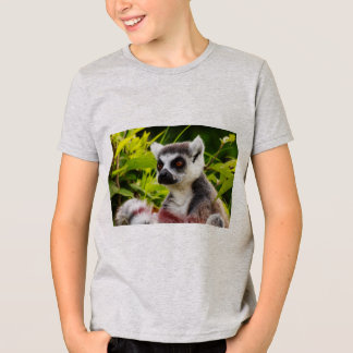 アメリカのappareal Tシャツのlemurのクローズアップ Tシャツ