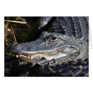 アメリカアリゲーター、フロリダの沼沢地2010年 カード