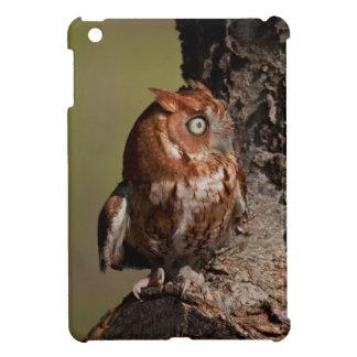 アメリカオオコノハズクのiPad Miniの場合 iPad Miniケース