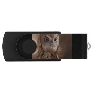 アメリカオオコノハズク USBフラッシュドライブ