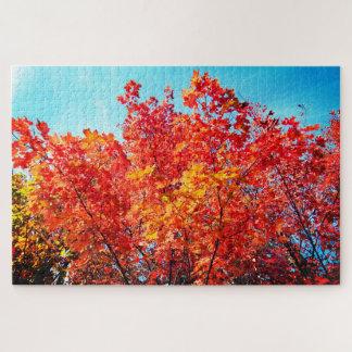 アメリカハナノキの木 ジグソーパズル