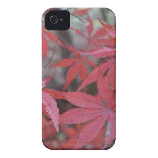 アメリカハナノキの葉 Case-Mate iPhone 4 ケース