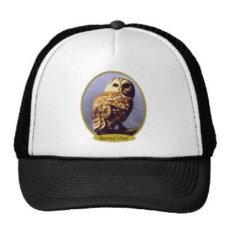 アメリカフクロウの帽子 キャップ