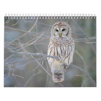 アメリカフクロウの溝彫りVaria カレンダー