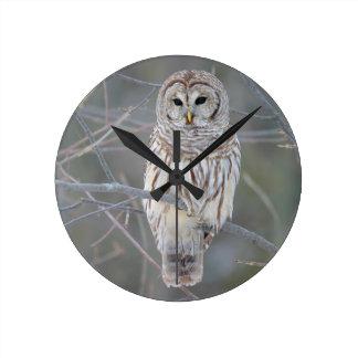 アメリカフクロウの溝彫りVaria ラウンド壁時計