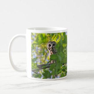 アメリカフクロウ コーヒーマグカップ