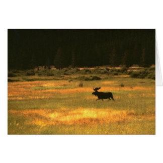 アメリカヘラジカのBullイエローストーン国立公園 カード