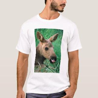 アメリカヘラジカ、Alcesのalces、草、Kenaiにあっている子牛 Tシャツ