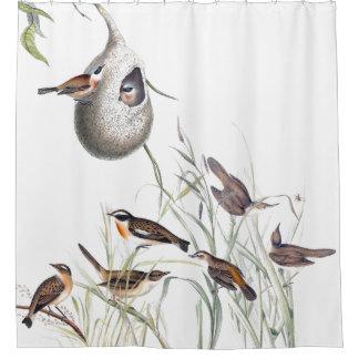 アメリカムシクイの鳥の野性生物動物のシャワー・カーテン シャワーカーテン