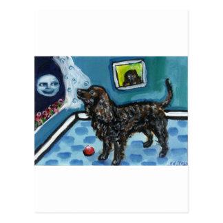 アメリカ水スパニエル犬は微笑の月を見ます ポストカード