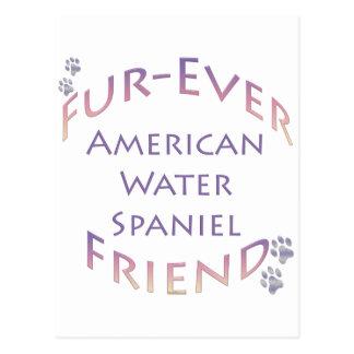 アメリカ水スパニエル犬Furever ポストカード