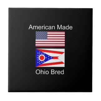 """""""アメリカ生まれ。オハイオ州は""""旗および愛国心を繁殖させました タイル"""