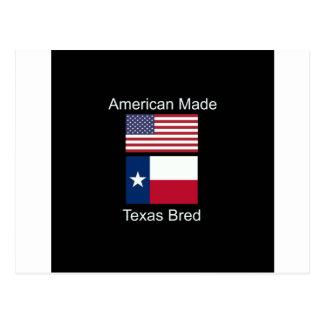 """""""アメリカ生まれ。テキサス州は""""旗および愛国心を繁殖させました ポストカード"""