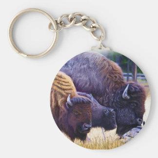 アメリカ野牛家族 キーホルダー