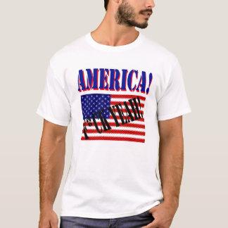アメリカ! ええF*CK! Tシャツ