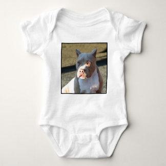アメリカ(犬)スタッフォードテリアの子犬 ベビーボディスーツ