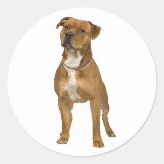 アメリカ(犬)スタッフォードテリア犬のステッカーのシール ラウンドシール
