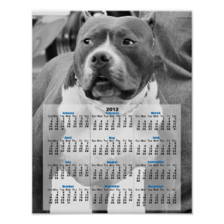 アメリカ(犬)スタッフォードテリア ポスター