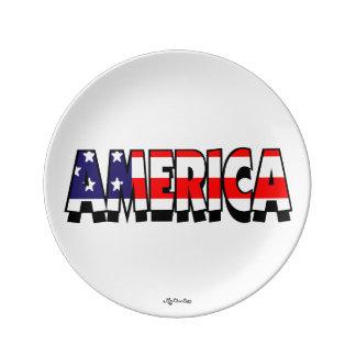 アメリカ! 8.5プレート 磁器プレート