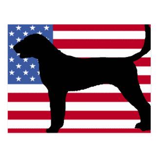 アメリカfoxhoundのシルエット米国flag.png ポストカード