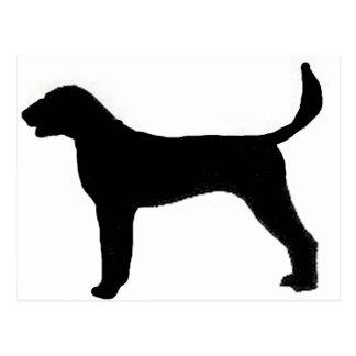 アメリカFoxhoundのシルエット ポストカード