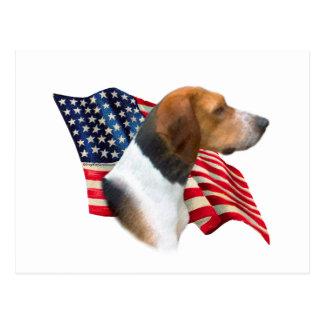 アメリカFoxhoundの旗 ポストカード