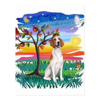 アメリカFoxhound -日曜日の白熱 ポストカード