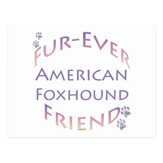 アメリカFoxhound Furever ポストカード