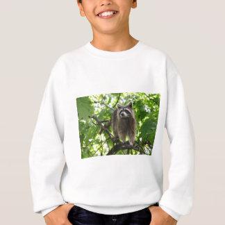 アライグマ スウェットシャツ