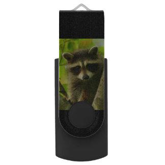 アライグマ USBフラッシュドライブ