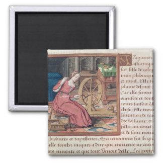 アラクネーは、から「des Femmes Celebresを竸います マグネット